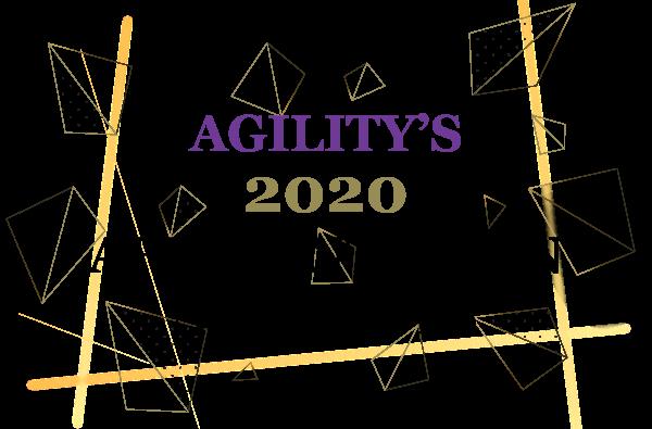 2020 Affluent Asian Segments