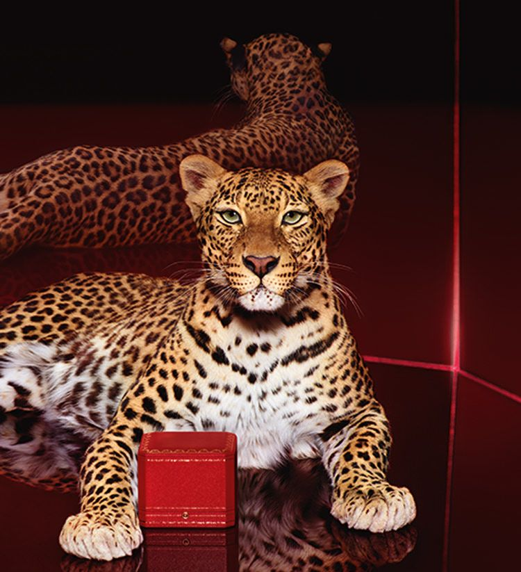 FEATURED Vogue Business:卡地亚上天猫,远见卓识还是一招险棋?